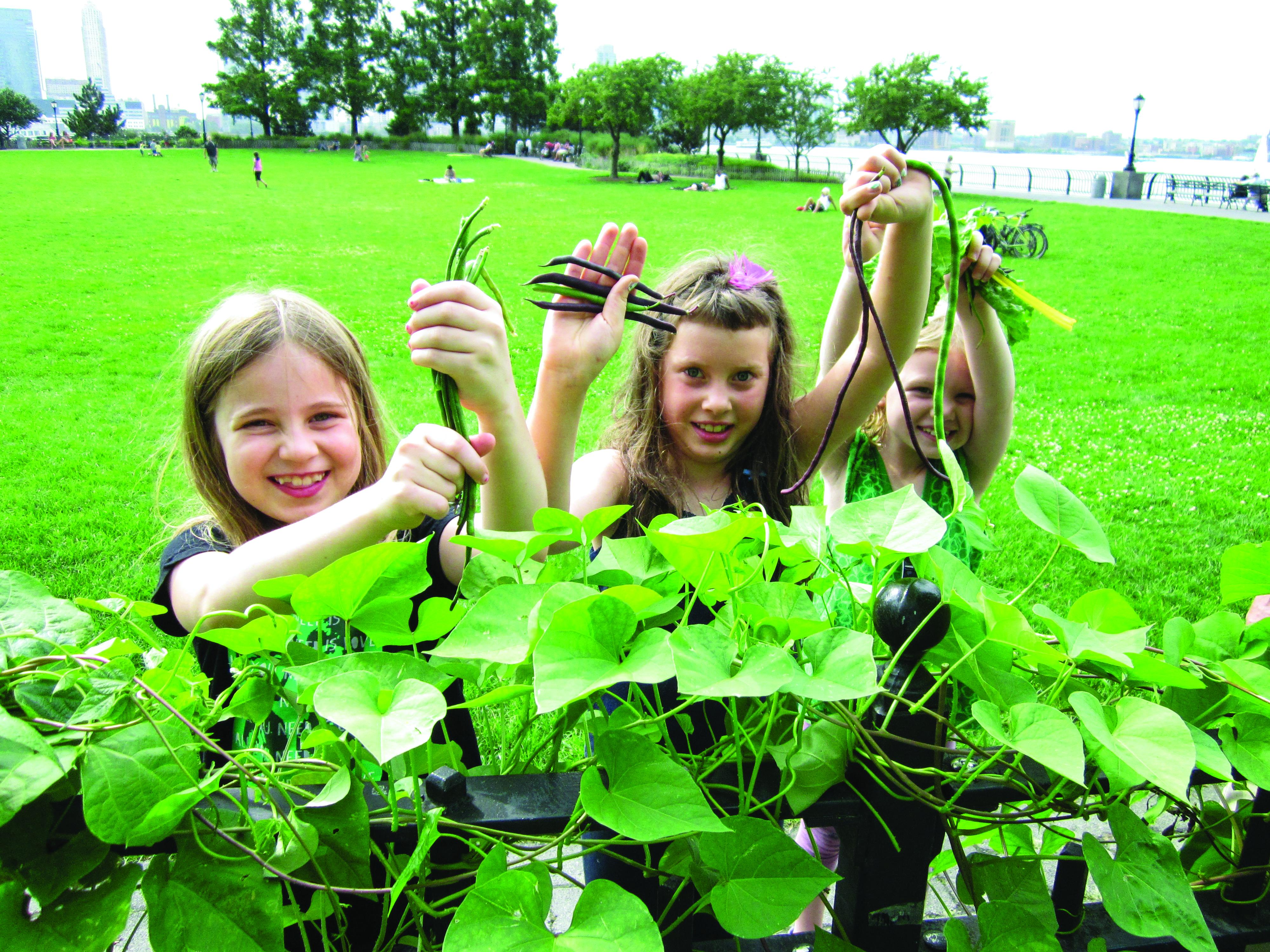 BPCA Children's Gardening