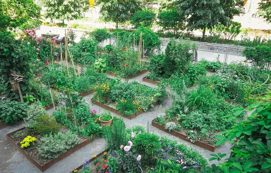 Liberty Community Gardens 2